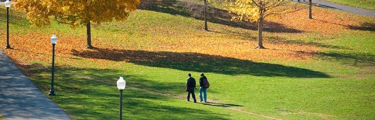 students walking on the drillfield